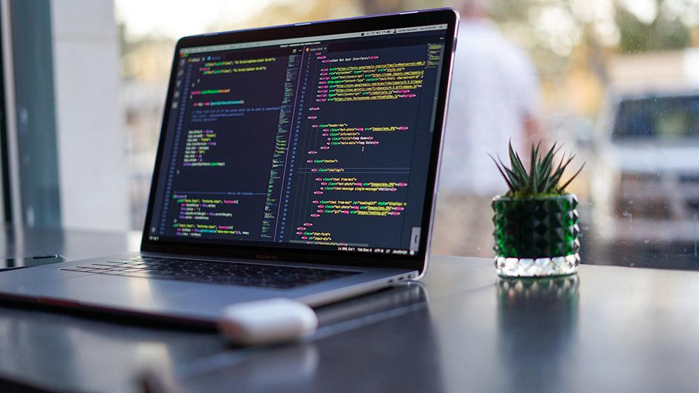 Website Designer in Drayton, Portsmouth