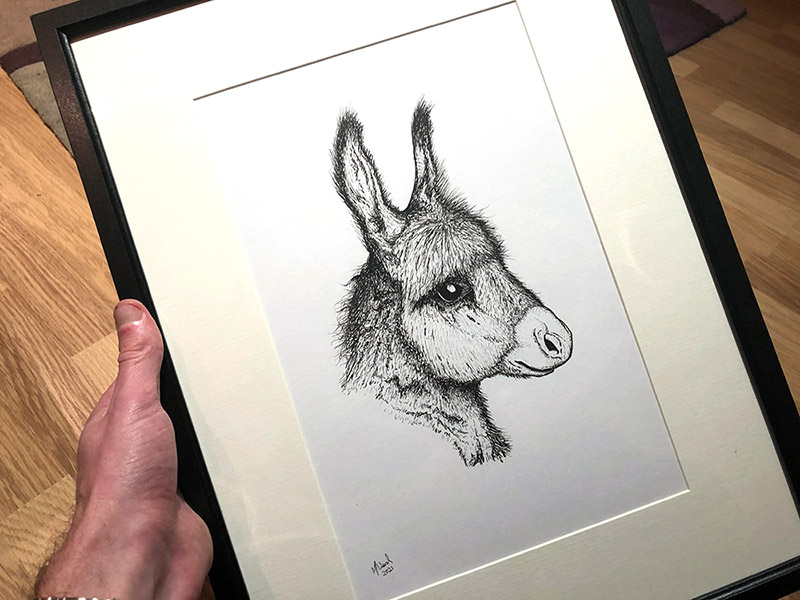 Animal Portrait Artist Hampshire
